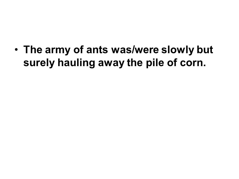 The army of ants was/were slowly but surely hauling away the pile of corn.