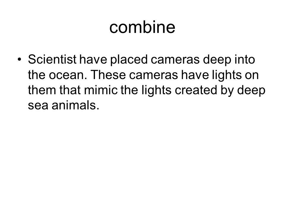 combine Scientist have placed cameras deep into the ocean.