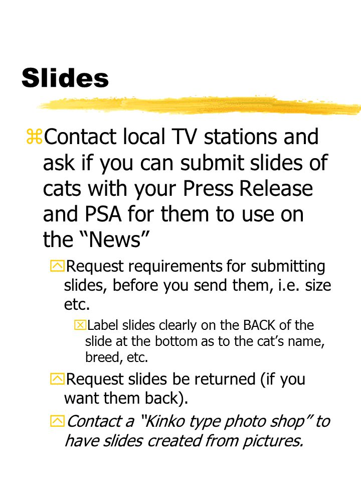 Slides zContact local TV stations and ask if you can submit slides of cats with your Press Release and PSA for them to use on the News yRequest requirements for submitting slides, before you send them, i.e.