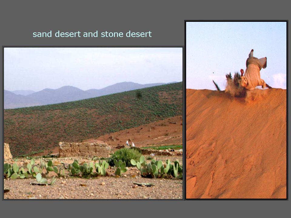 sand desert and stone desert