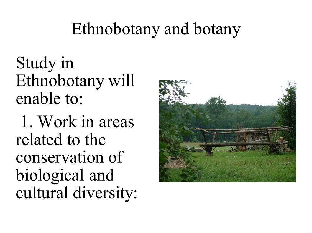 Ethnobotany and botany Study in Ethnobotany will enable to: 1. Work in areas related to the conservation of biological and cultural diversity: