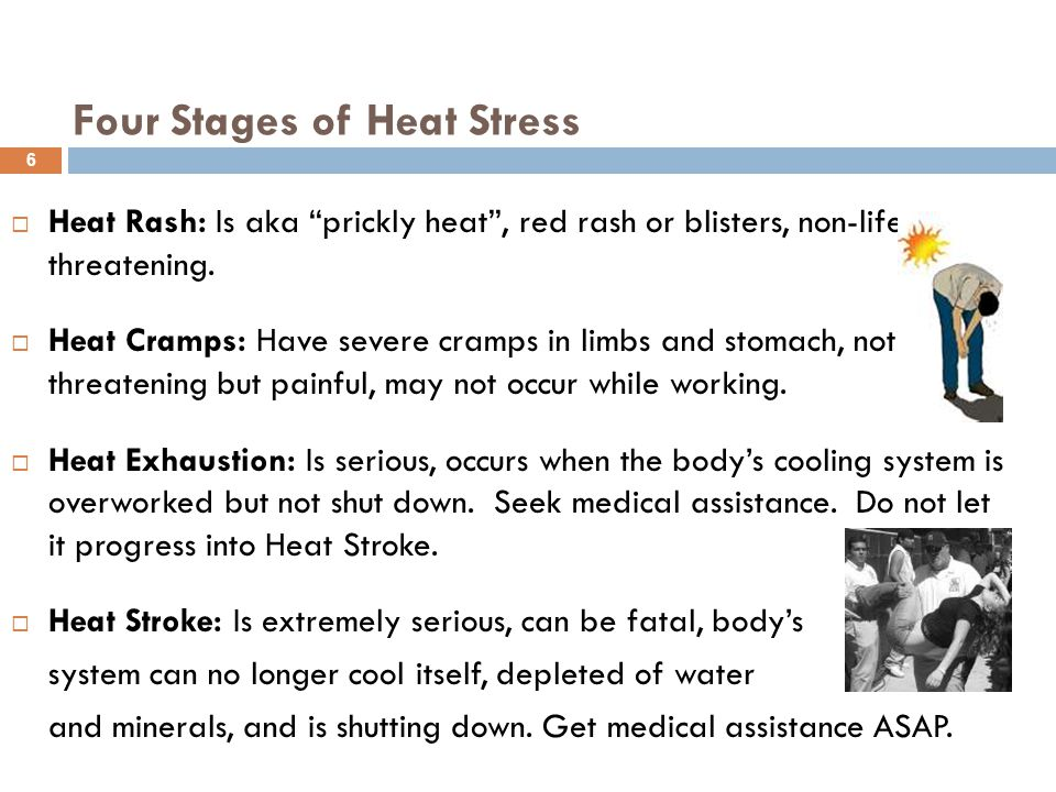 """Four Stages of Heat Stress  Heat Rash: Is aka """"prickly heat"""", red rash or blisters, non-life threatening.  Heat Cramps: Have severe cramps in limbs"""