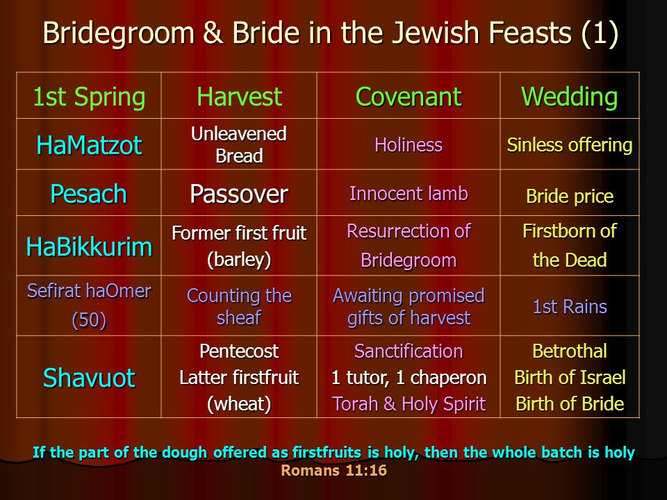 Bridegroom & Bride in the Jewish Feasts (1) 1st SpringHarvestCovenantWedding HaMatzot Unleavened Bread Holiness Sinless offering PesachPassover Innocent lamb Bride price HaBikkurim Former first fruit (barley) Resurrection of Bridegroom Firstborn of the Dead Sefirat haOmer (50) Counting the sheaf Awaiting promised gifts of harvest 1st Rains ShavuotPentecost Latter firstfruit (wheat)Sanctification 1 tutor, 1 chaperon Torah & Holy Spirit Betrothal Birth of Israel Birth of Bride If the part of the dough offered as firstfruits is holy, then the whole batch is holy Romans 11:16