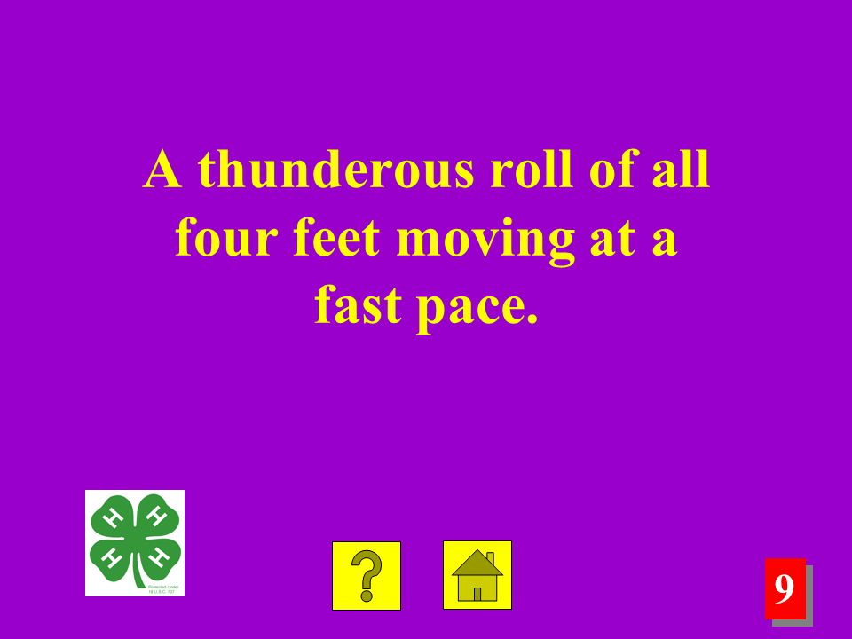 9 9 A thunderous roll of all four feet moving at a fast pace.