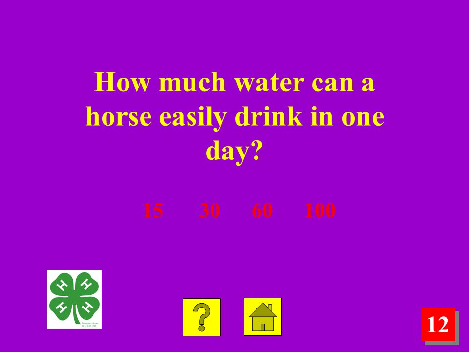12 How much water can a horse easily drink in one day? 15 30 60 100