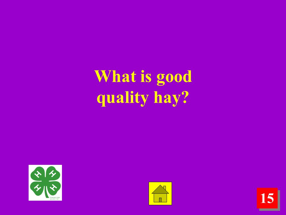 15 What is good quality hay?