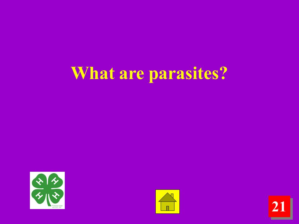 21 What are parasites?