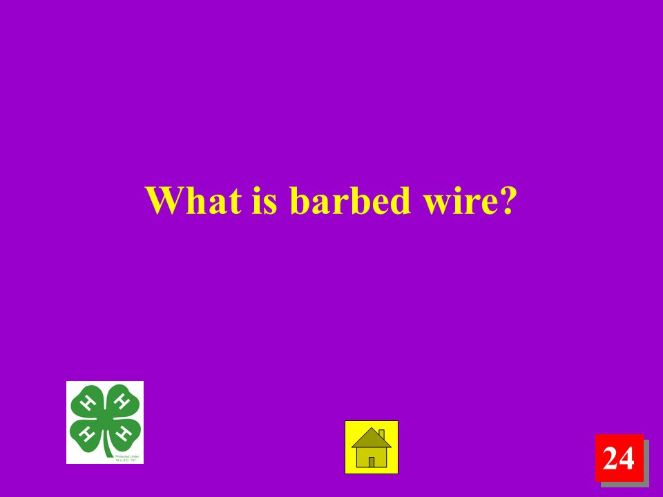 What is barbed wire 24