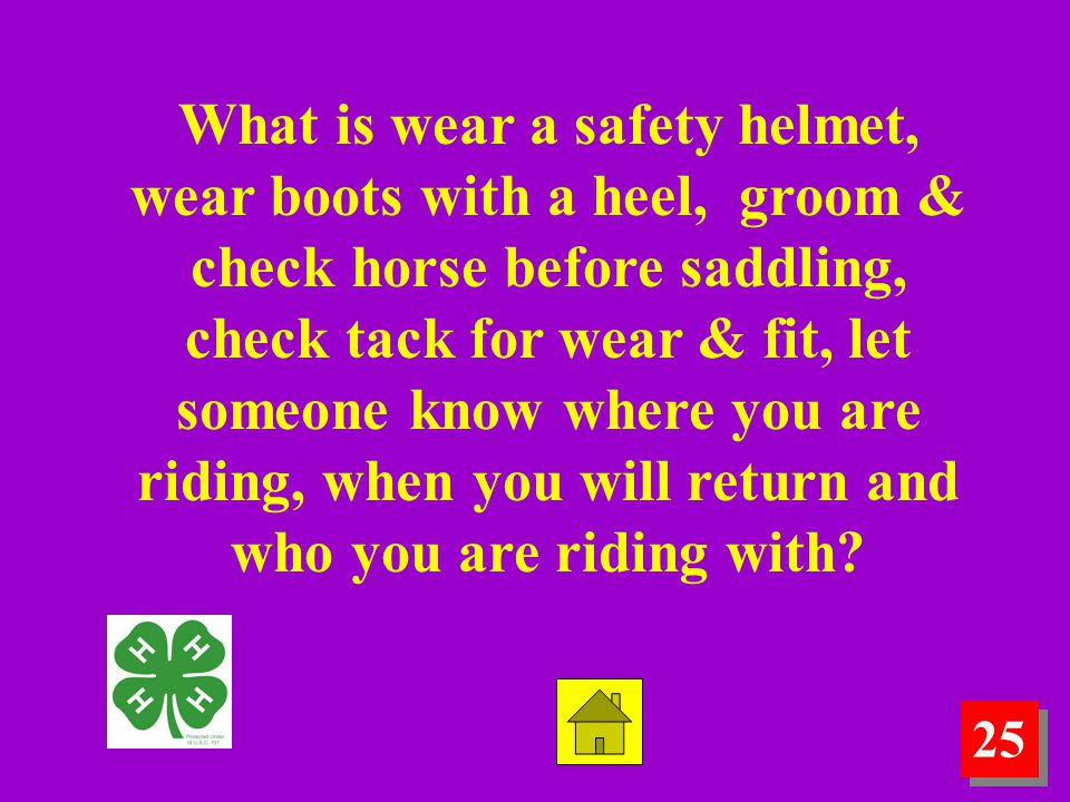 25 What is wear a safety helmet, wear boots with a heel, groom & check horse before saddling, check tack for wear & fit, let someone know where you are riding, when you will return and who you are riding with?