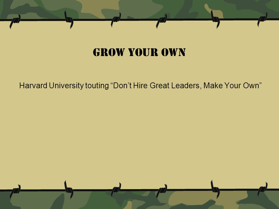 Harvard University touting Don't Hire Great Leaders, Make Your Own Grow Your Own