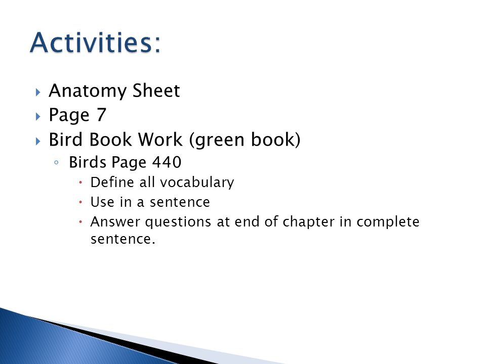  Anatomy Sheet  Page 7  Bird Book Work (green book) ◦ Birds Page 440  Define all vocabulary  Use in a sentence  Answer questions at end of chapter in complete sentence.