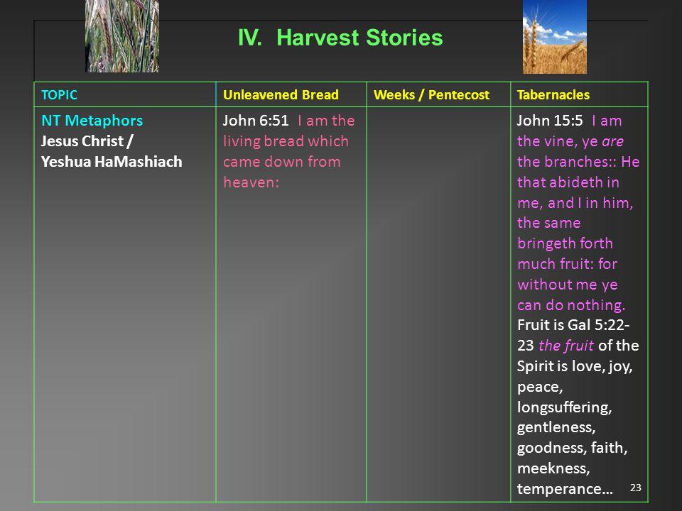 23 IV. Harvest Stories TOPICUnleavened BreadWeeks / PentecostTabernacles NT Metaphors Jesus Christ / Yeshua HaMashiach John 6:51 I am the living bread