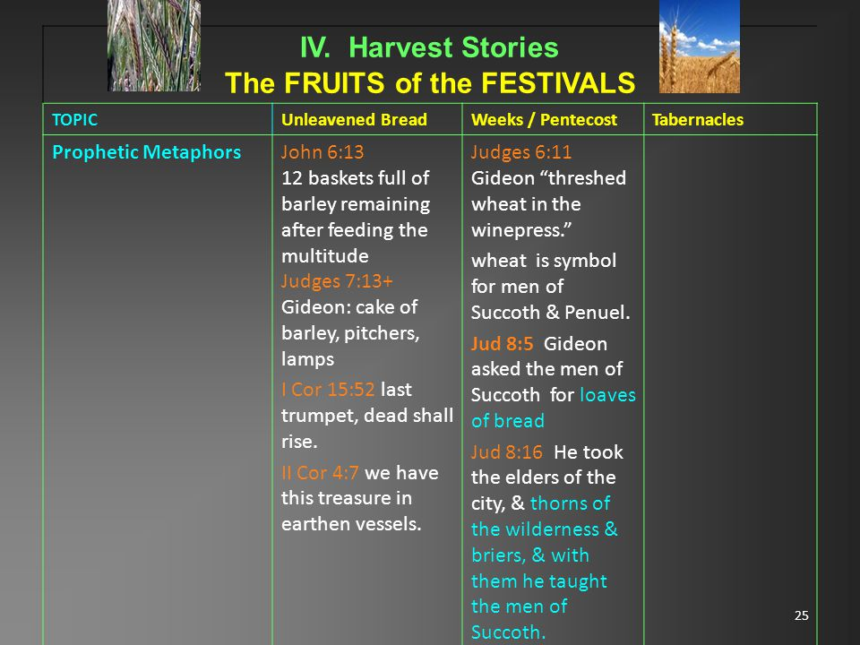25 IV. Harvest Stories The FRUITS of the FESTIVALS TOPICUnleavened BreadWeeks / PentecostTabernacles Prophetic MetaphorsJohn 6:13 12 baskets full of b