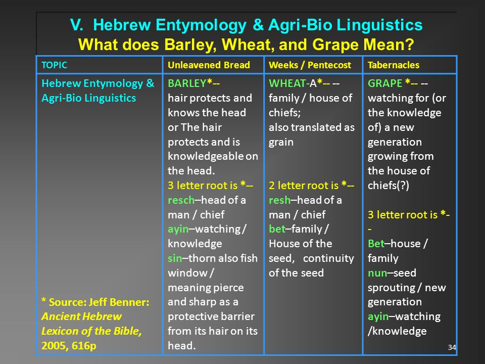 34 V. Hebrew Entymology & Agri-Bio Linguistics What does Barley, Wheat, and Grape Mean.