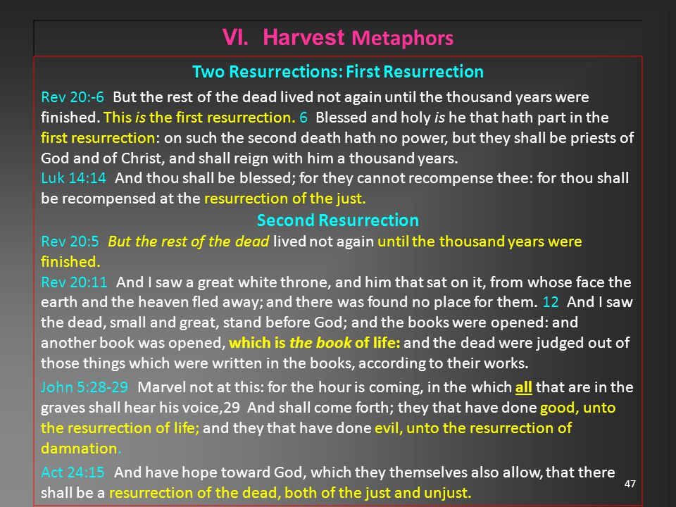 47 VI. Harvest Metaphors Two Resurrections: First Resurrection Rev 20:-6 But the rest of the dead lived not again until the thousand years were finish