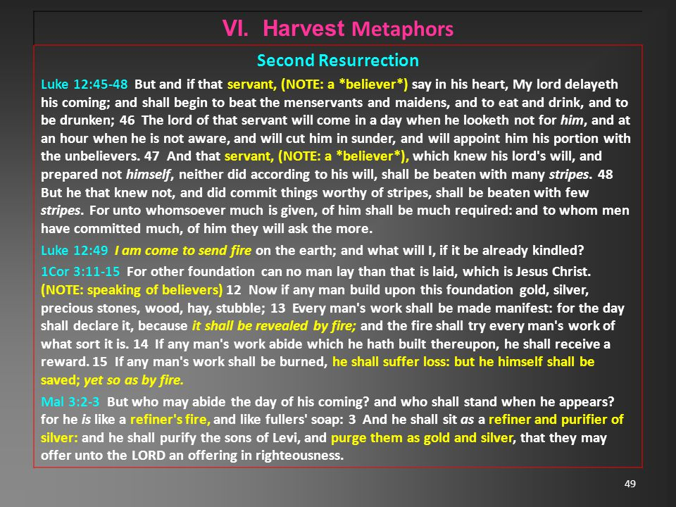 49 VI. Harvest Metaphors Second Resurrection Luke 12:45-48 But and if that servant, (NOTE: a *believer*) say in his heart, My lord delayeth his coming