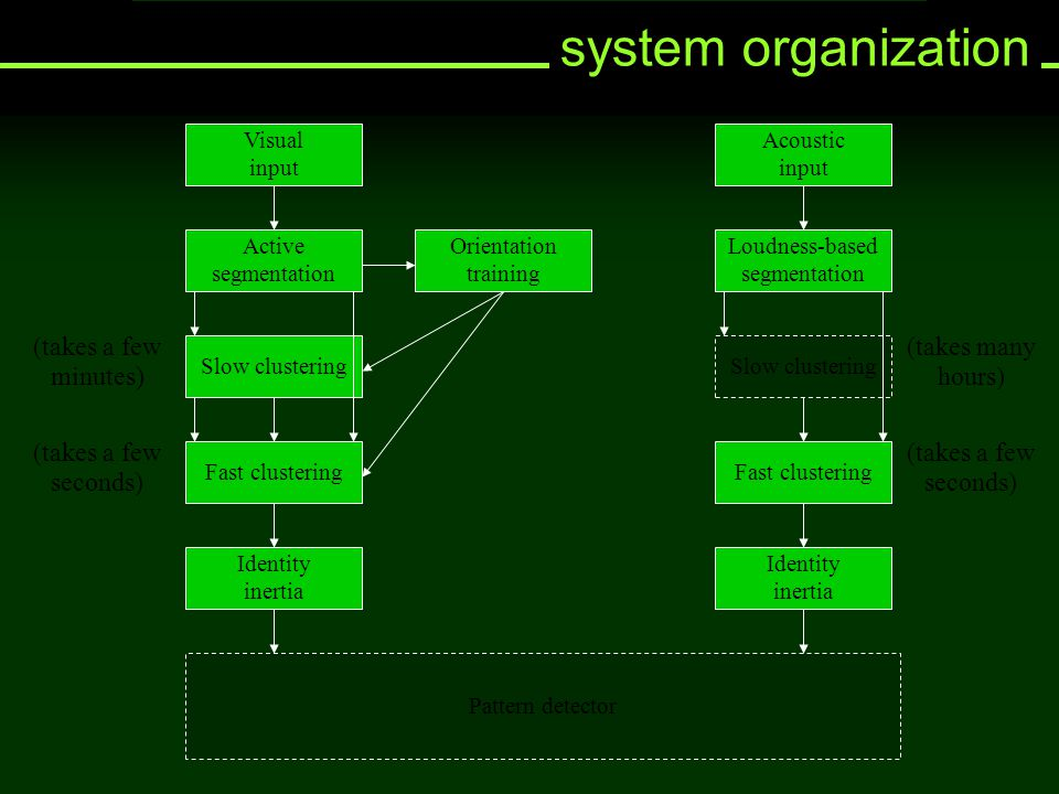 system organization Pattern detector Identity inertia Slow clustering Fast clustering Identity inertia Slow clustering Fast clustering Orientation tra