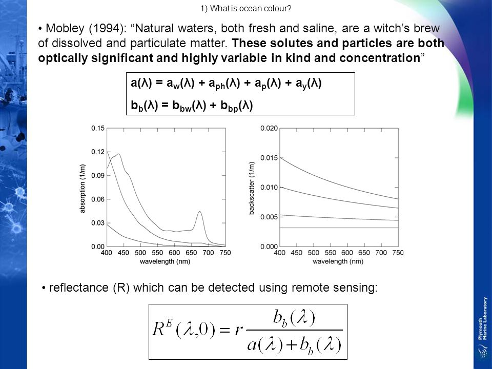 Mobley (1994): Natural waters, both fresh and saline, are a witch's brew of dissolved and particulate matter.