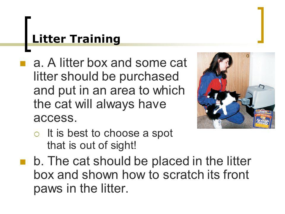 Litter Training a.