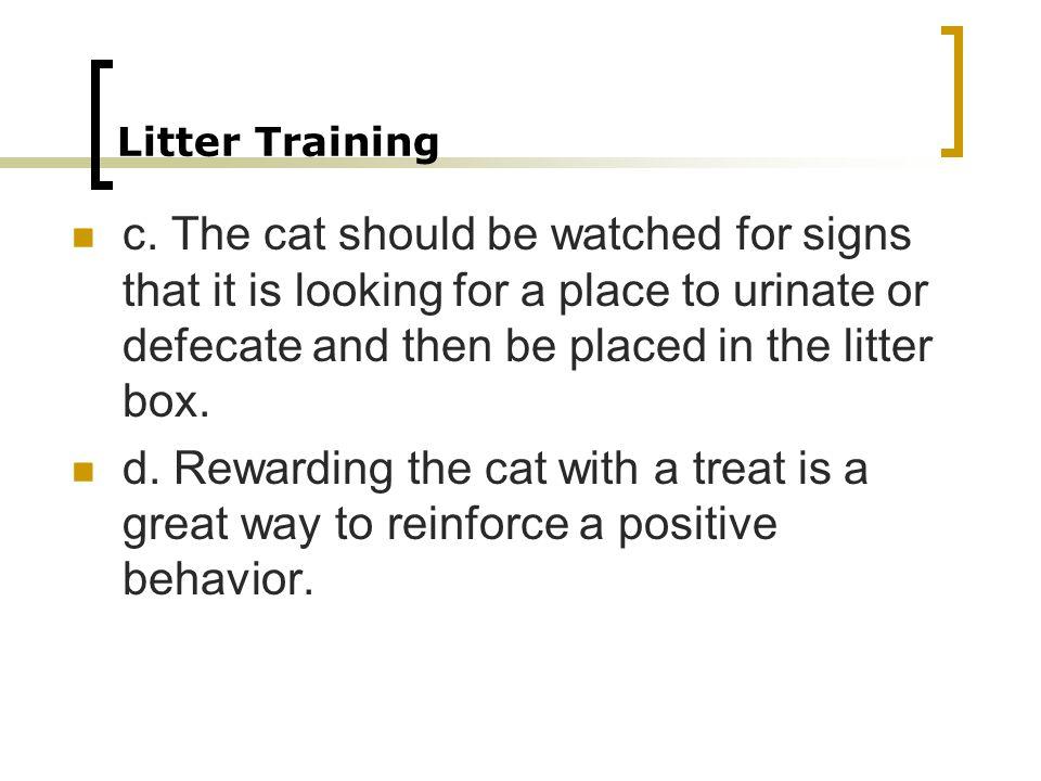 Litter Training c.