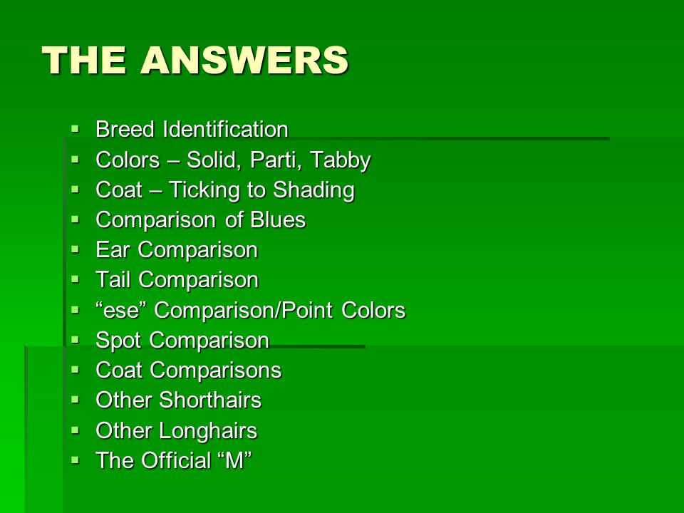 THE ANSWERS  Breed Identification  Colors – Solid, Parti, Tabby  Coat – Ticking to Shading  Comparison of Blues  Ear Comparison  Tail Comparison