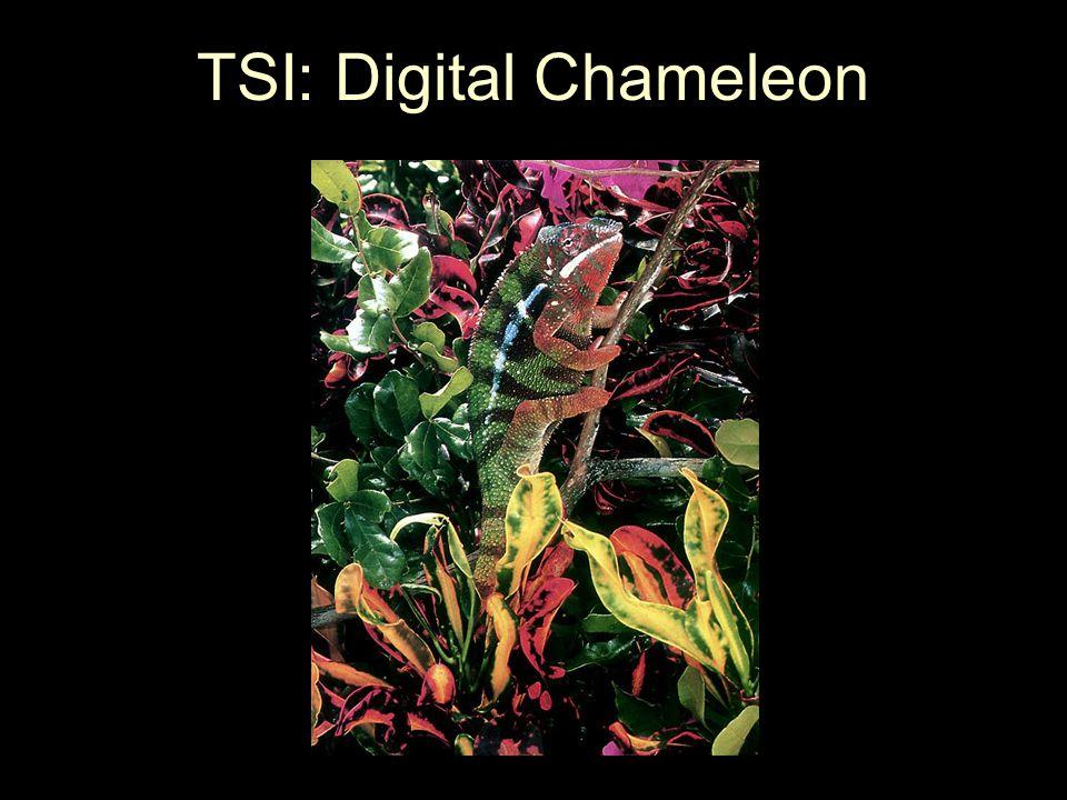 TSI: Digital Chameleon