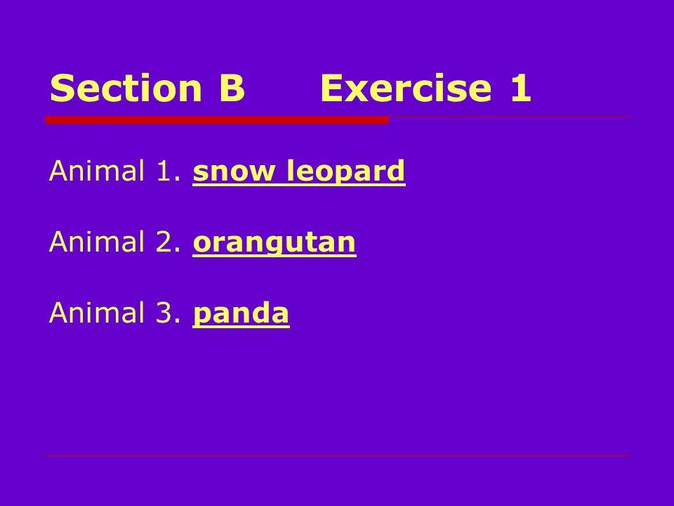 Section BExercise 1 Animal 1. snow leopard Animal 2. orangutan Animal 3. panda