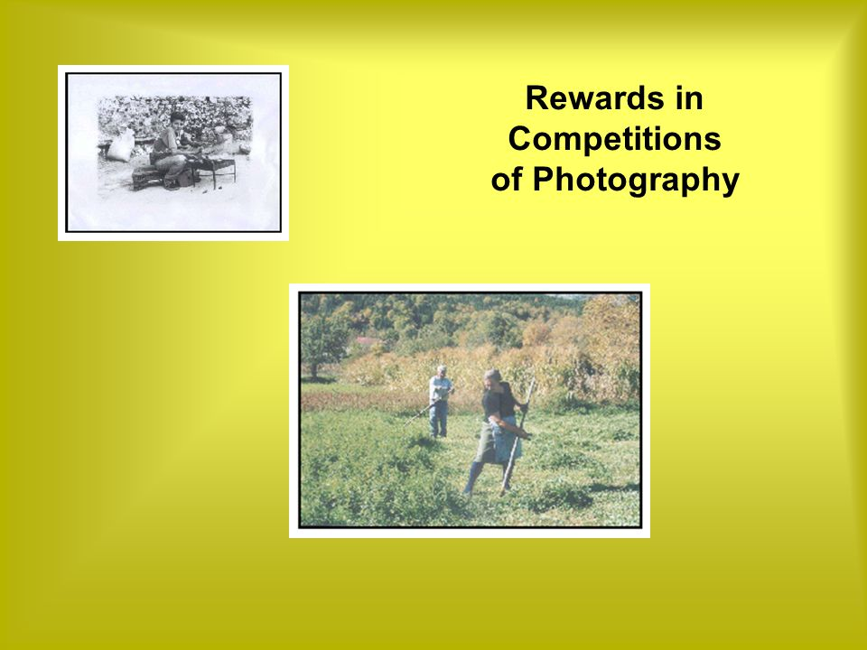 Rewards in Competitions of Photography