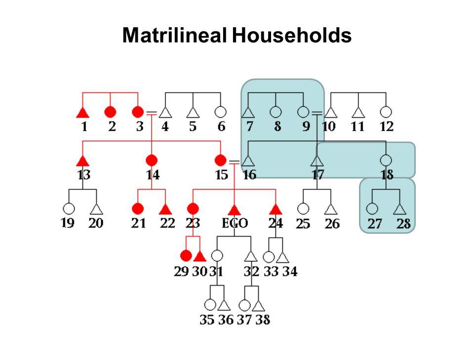 Matrilineal Households