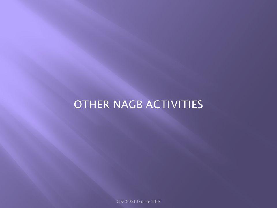 OTHER NAGB ACTIVITIES GROOM Trieste 2013