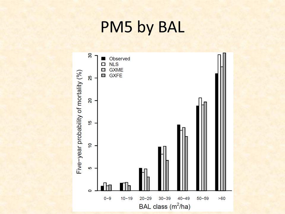 PM5 by BAL