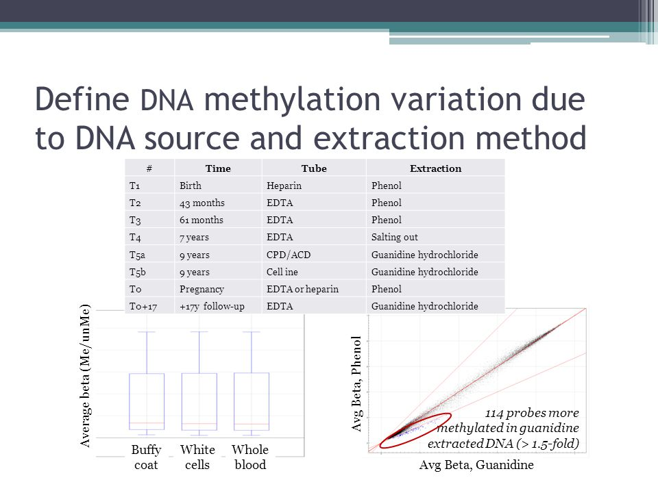 Define DNA methylation variation due to DNA source and extraction method Buffy coat White cells Whole blood Average beta (Me/unMe) Avg Beta, Guanidine 114 probes more methylated in guanidine extracted DNA (> 1.5-fold) #TimeTubeExtraction T1BirthHeparinPhenol T243 monthsEDTAPhenol T361 monthsEDTAPhenol T47 yearsEDTASalting out T5a9 yearsCPD/ACDGuanidine hydrochloride T5b9 yearsCell ineGuanidine hydrochloride T0PregnancyEDTA or heparinPhenol T0+17+17y follow-upEDTAGuanidine hydrochloride Avg Beta, Phenol