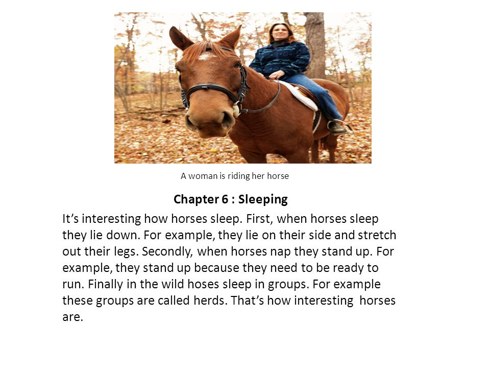 A woman is riding her horse Chapter 6 : Sleeping It's interesting how horses sleep.