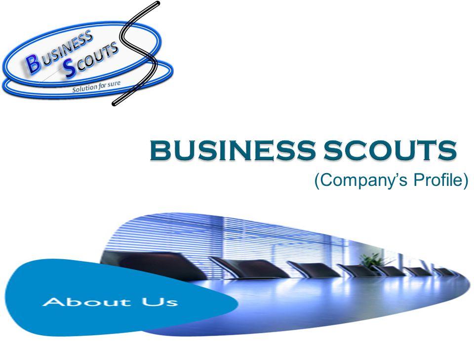 (Company's Profile)