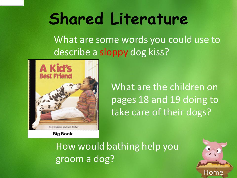 Home Shared Literature What are some words you could use to describe a sloppy dog kiss? How would bathing help you groom a dog? What are the children