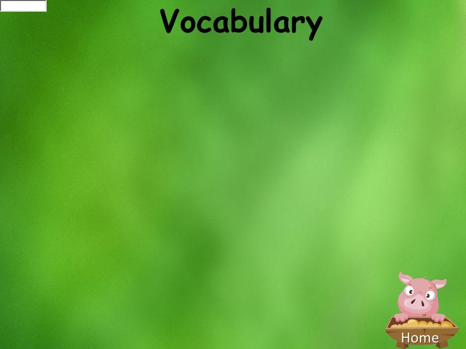 Home Vocabulary