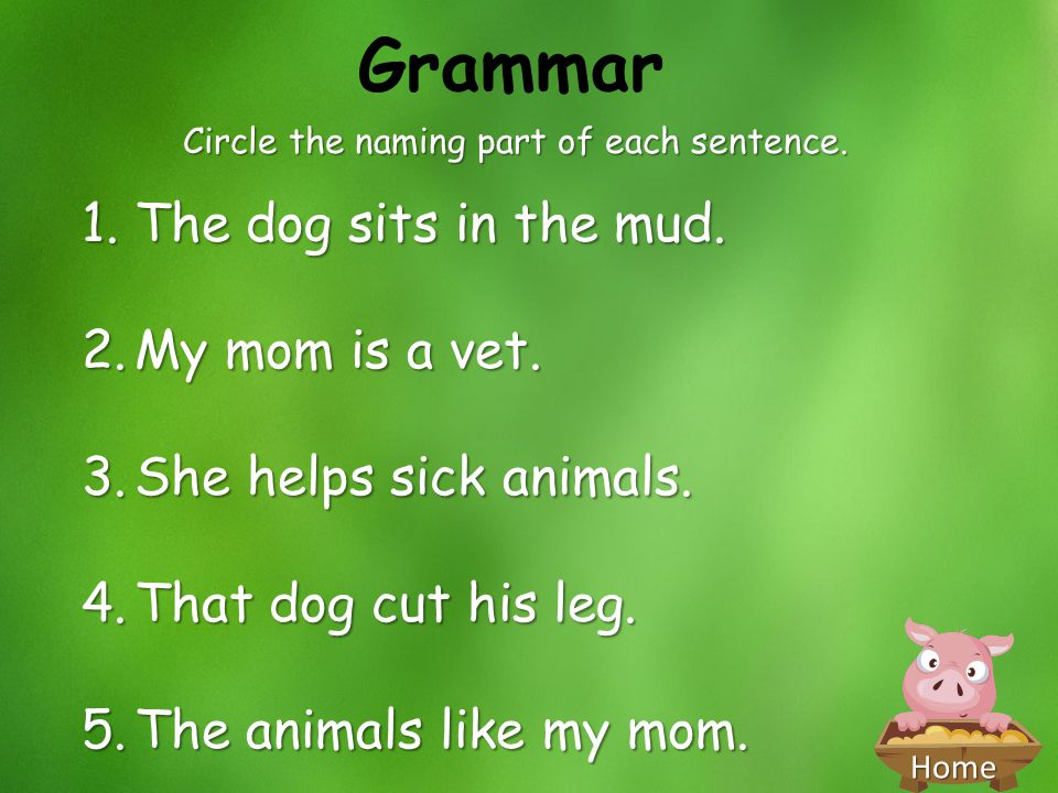 Home Grammar Circle the naming part of each sentence. 1.The dog sits in the mud. 2.My mom is a vet. 3.She helps sick animals. 4.That dog cut his leg.