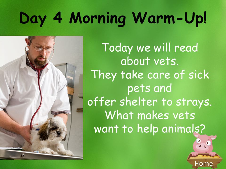 Home Day 4 Morning Warm-Up! Today we will read about vets. They take care of sick pets and offer shelter to strays. What makes vets want to help anima