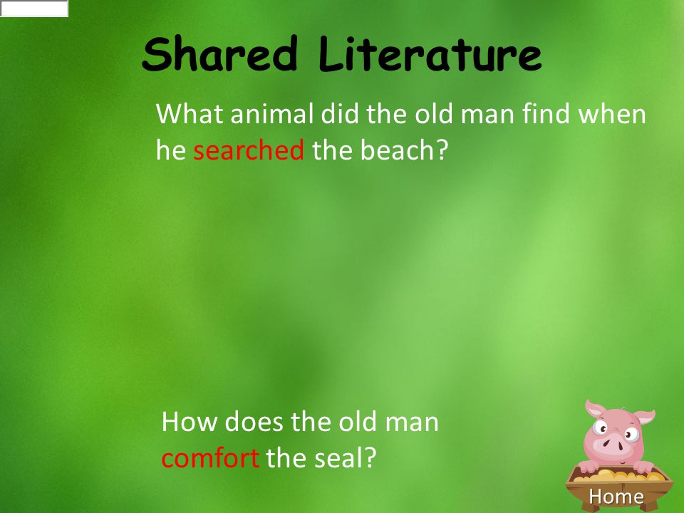 Home Shared Literature What animal did the old man find when he searched the beach? How does the old man comfort the seal?