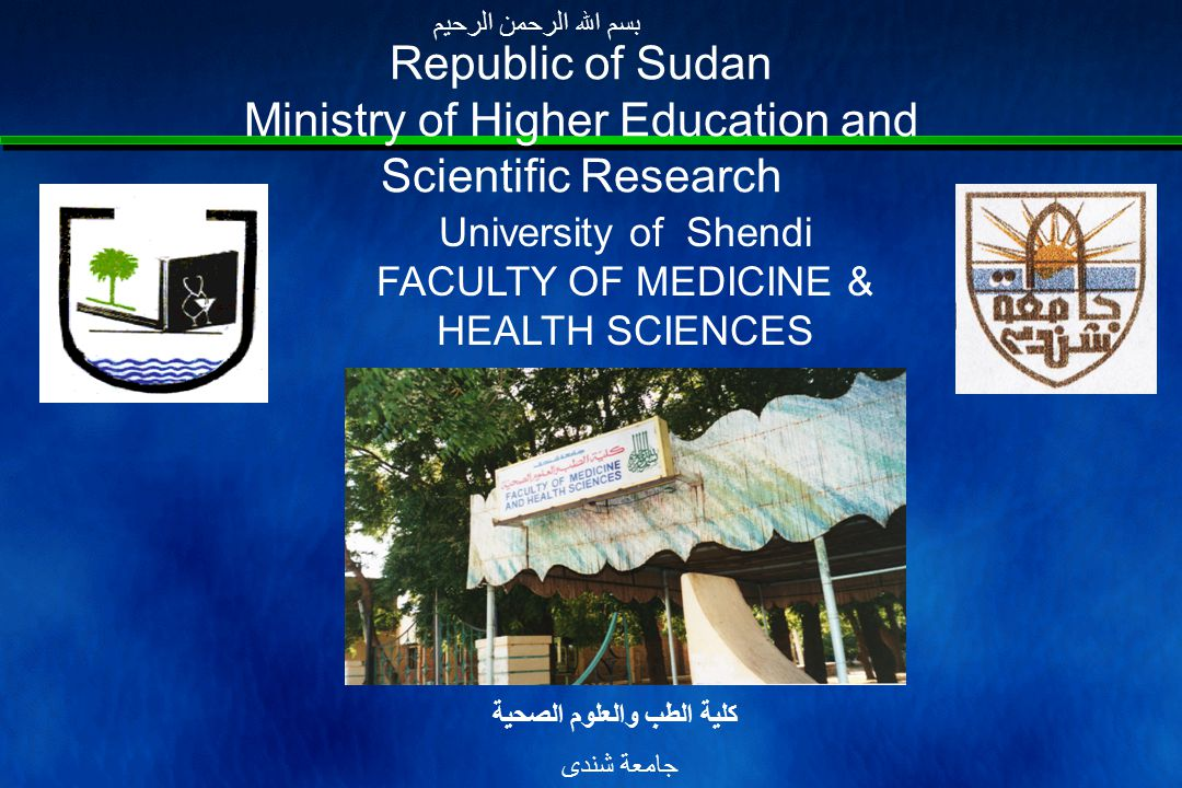 20041996 Year YearDoctors 2040811648 Total No Registered 57653426 Total No Available in Sudan Sources: Sudan Medical Council 2004 Annual stateside Health Report 2002 Courtesy of Prof.
