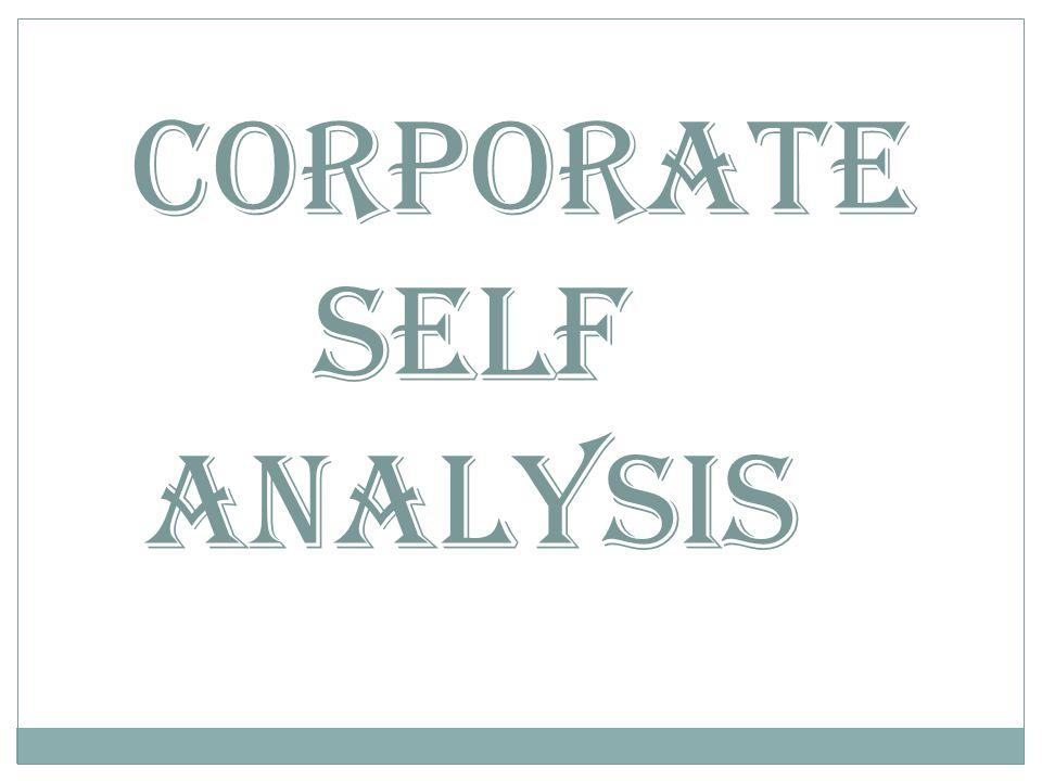 Corporate Self Analysis