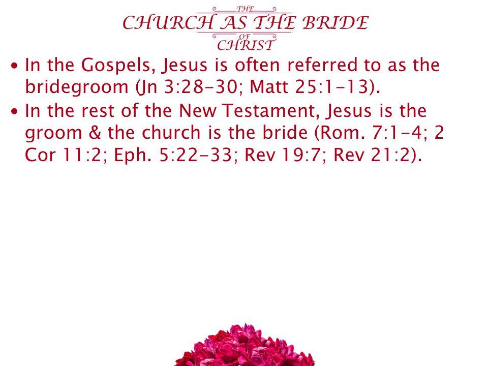 In the Gospels, Jesus is often referred to as the bridegroom (Jn 3:28-30; Matt 25:1-13).