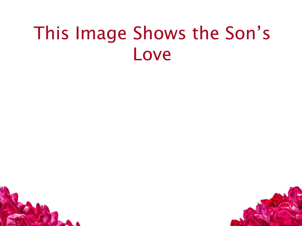 This Image Shows the Son's Love