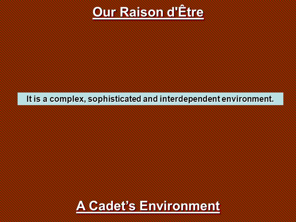 It is a complex, sophisticated and interdependent environment. Our Raison d'Être A Cadet's Environment