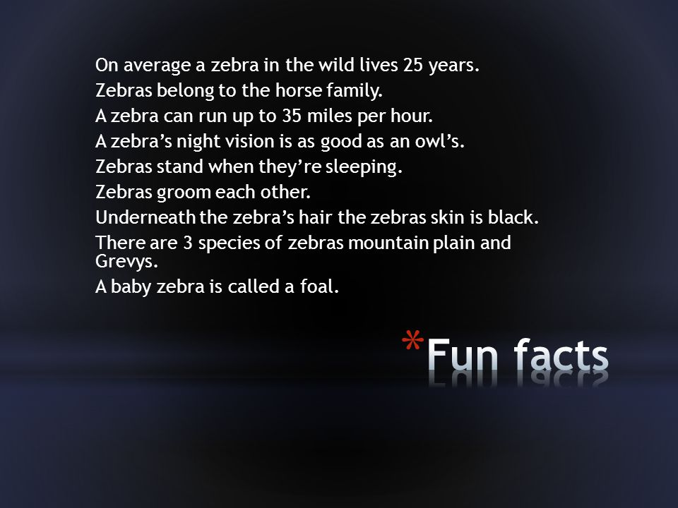 On average a zebra in the wild lives 25 years.Zebras belong to the horse family.