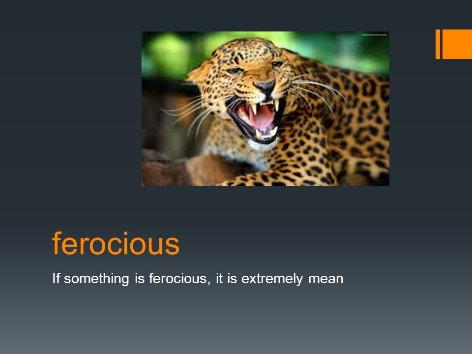 ferocious If something is ferocious, it is extremely mean