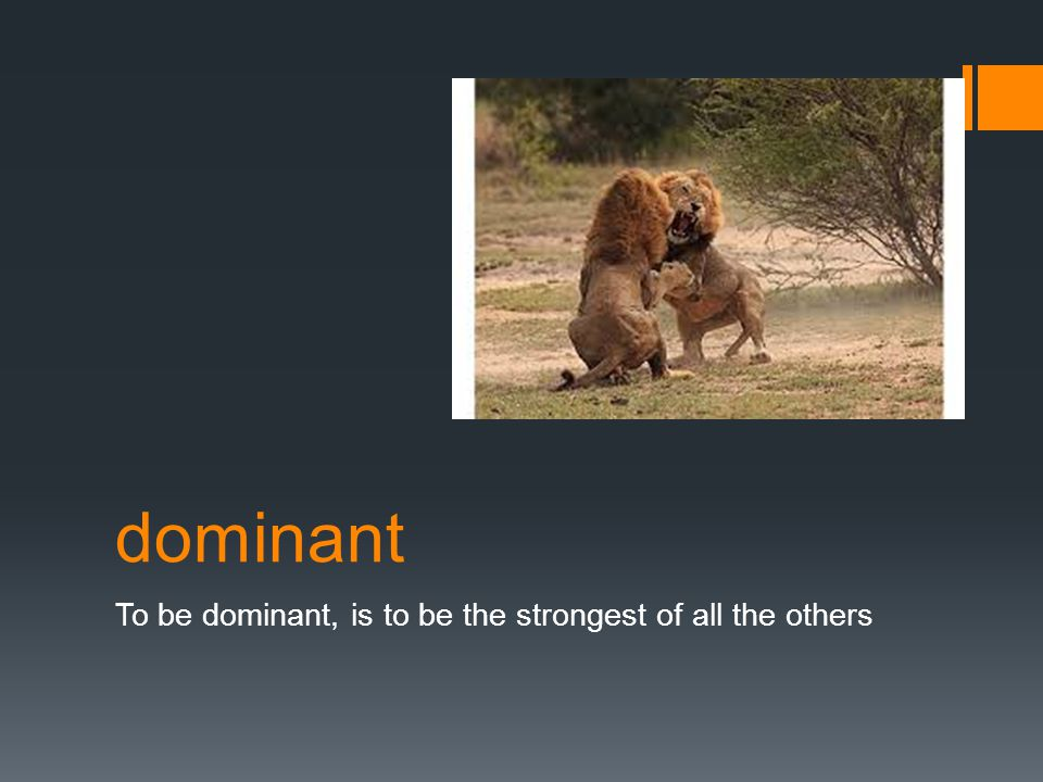 dominant To be dominant, is to be the strongest of all the others