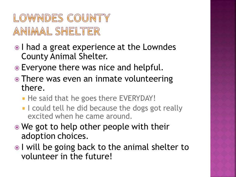  I had a great experience at the Lowndes County Animal Shelter.