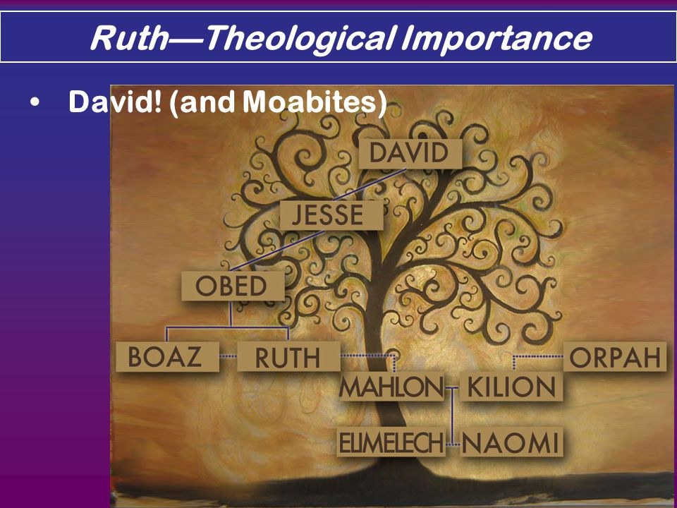 Ruth—Theological Importance David! (and Moabites)
