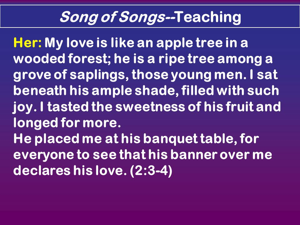 Song of Songs--Teaching Her: My love is like an apple tree in a wooded forest; he is a ripe tree among a grove of saplings, those young men.